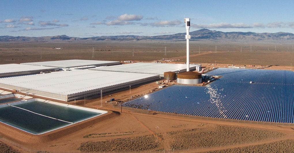 Sundrop-Farms-Australia-Full-Width-Tall-1020x533