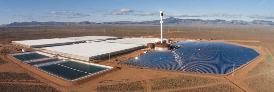 Sundrop-Farms-Australia-Full-Width-Tall-889x300