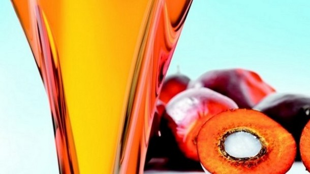 Indonesian-Minister-and-RSPO-open-to-collaboration-on-joint-sustainable-palm-oil-standard