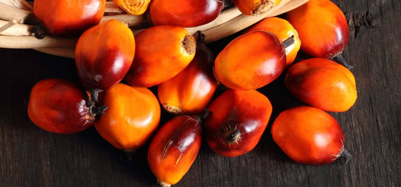 Peach-Palm-Fruit